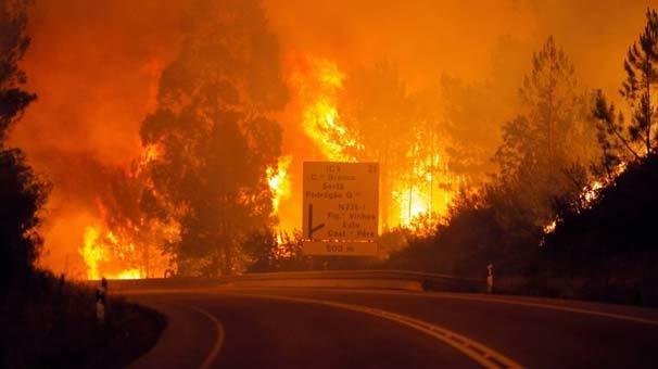 Portekiz'deki orman yangınlarında ölü sayısı yükseldi